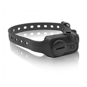 Dogtra IQ Bark Collar
