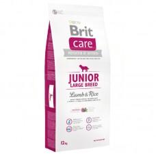 Brit Care Junior Kuzu&Pirinç 12KG
