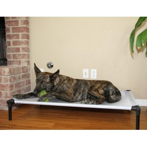Starmark The Dog Zone Pro-Training Bed